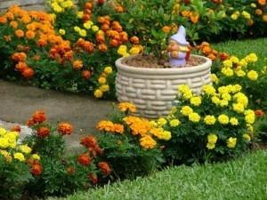 Jardinagem e Paisagismo Cursos - Meio Ambiente